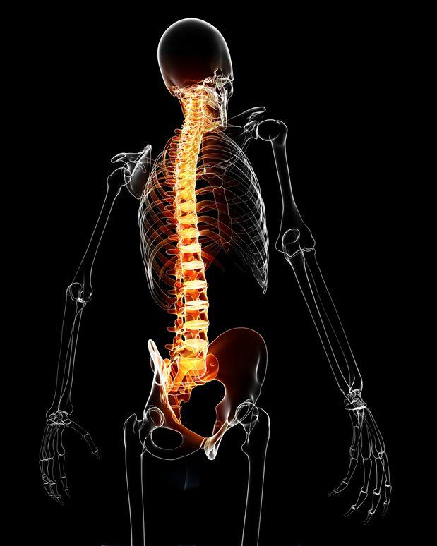 Albuquerque spinal cord accident